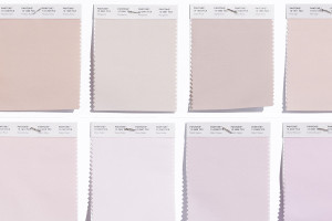 pantone-210-new-color-families-pinks
